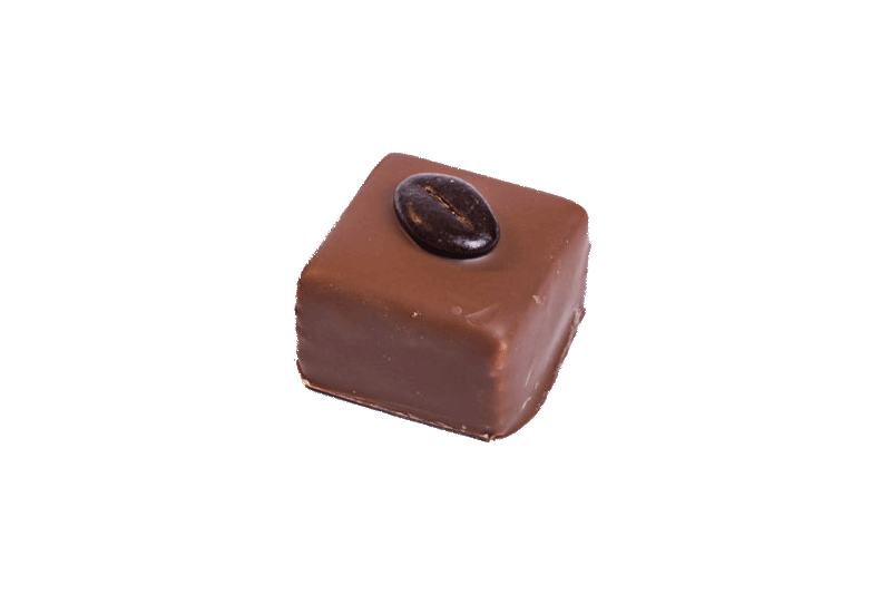 Coffee Praline