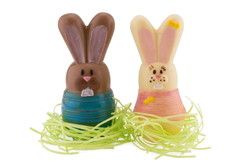 Chocolate easter bunny (male)
